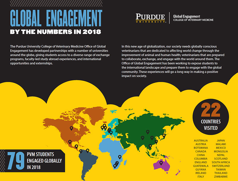 PVM Global Engagement Year in Review