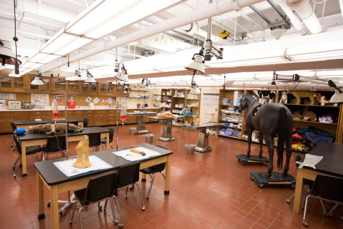 Clinical Skills Laboratory