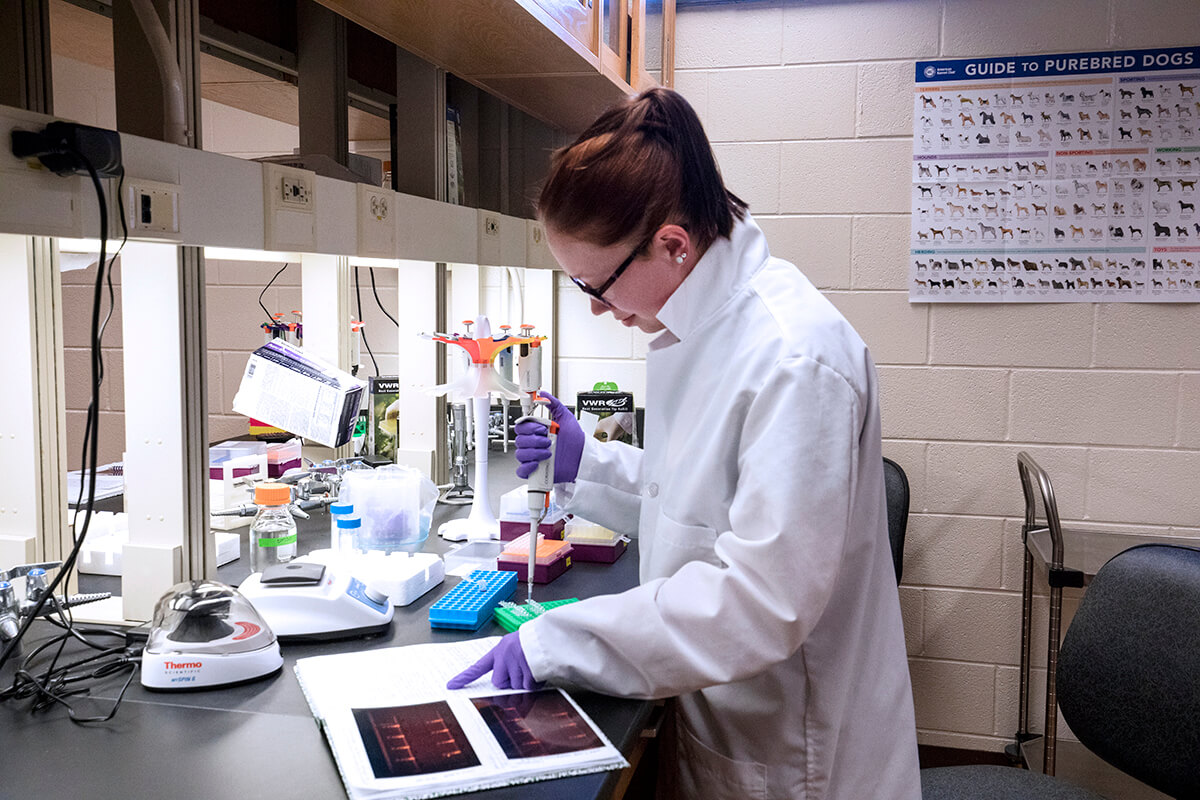 Sara Canada pictured in lab