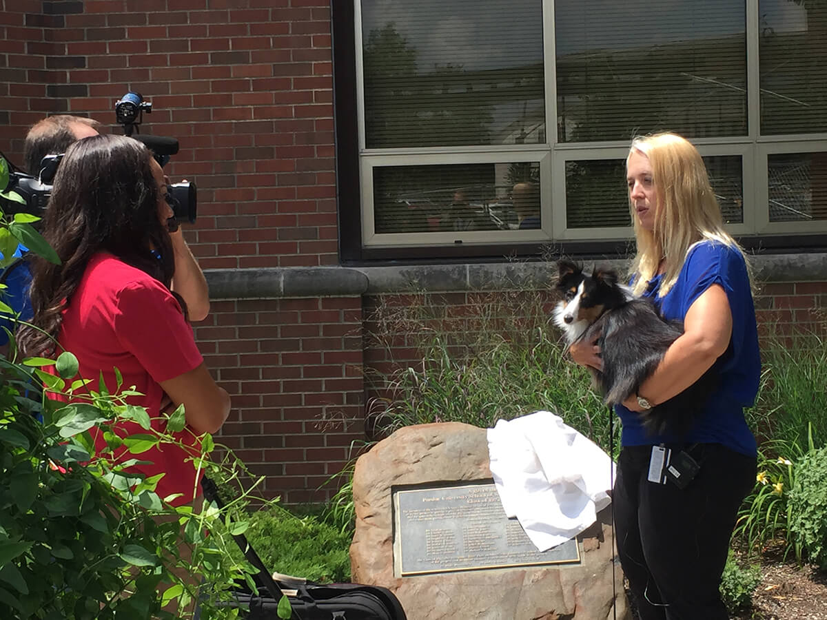 PVM Clinician Shares Tips on Helping Pets Beat the Heat