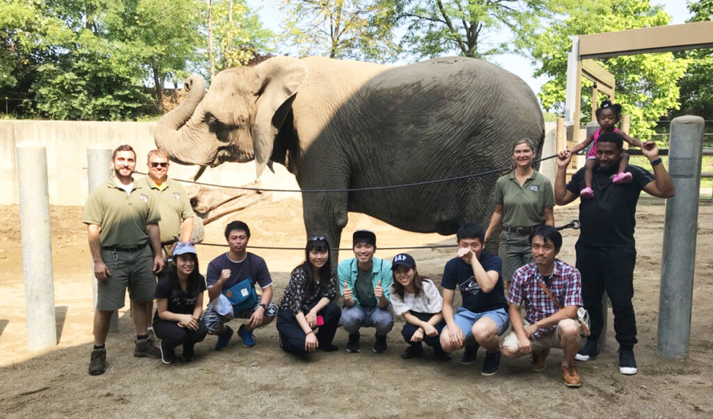 Kitasato visitors and Will Smith pictured with an elephant at the Indianapolis Zoo