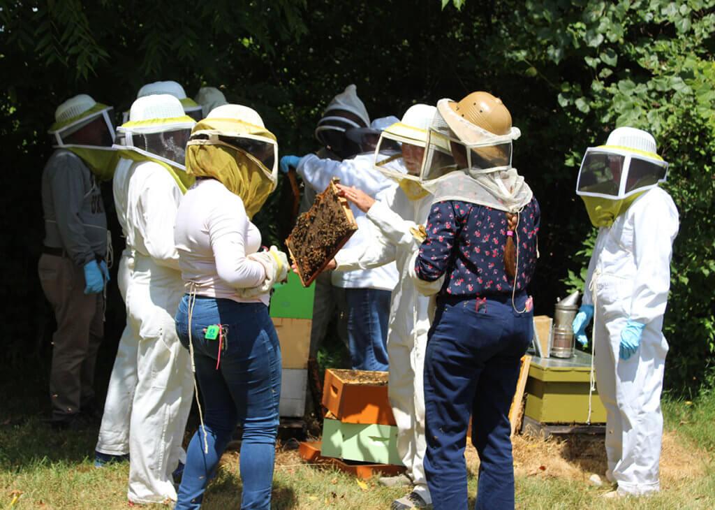 bee medicine workshop participants pictured