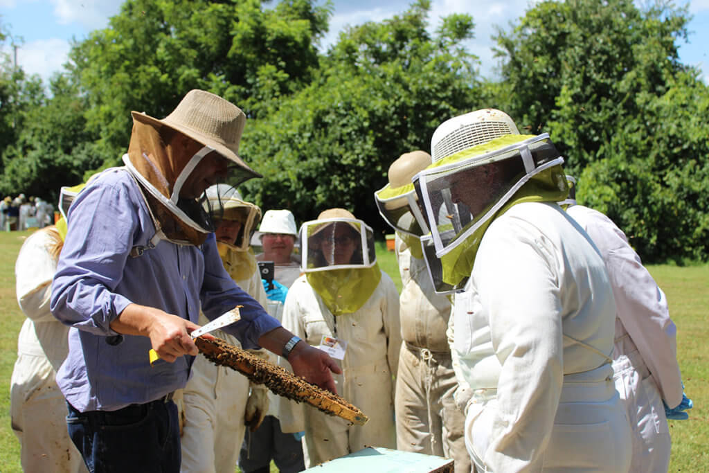 Participants pictured at Beekeeping for Veterinarians Workshop