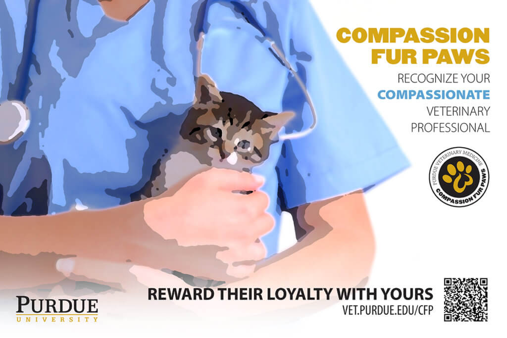 small animal Compassion Fur Paws canvas option