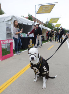 Carmella the dog pictured at PVM Homecoming booth
