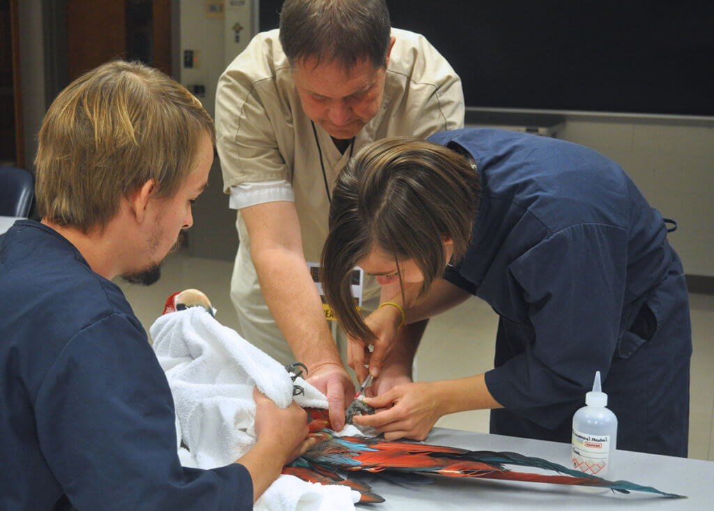 Dr. Thompson pictured with students in Avian Handling and Radiology Lab