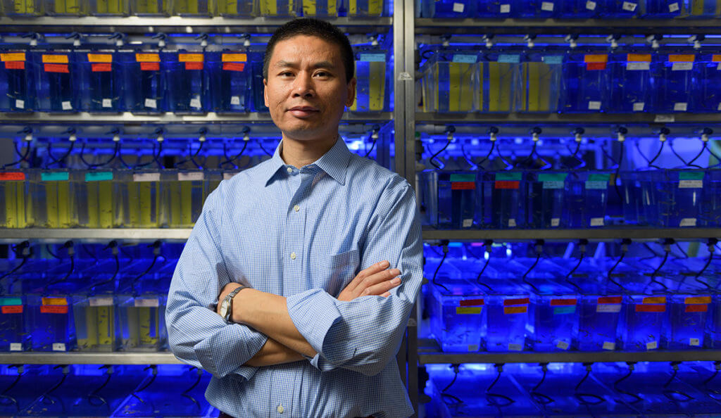 Dr. GuangJun Zhang pictured in his lab