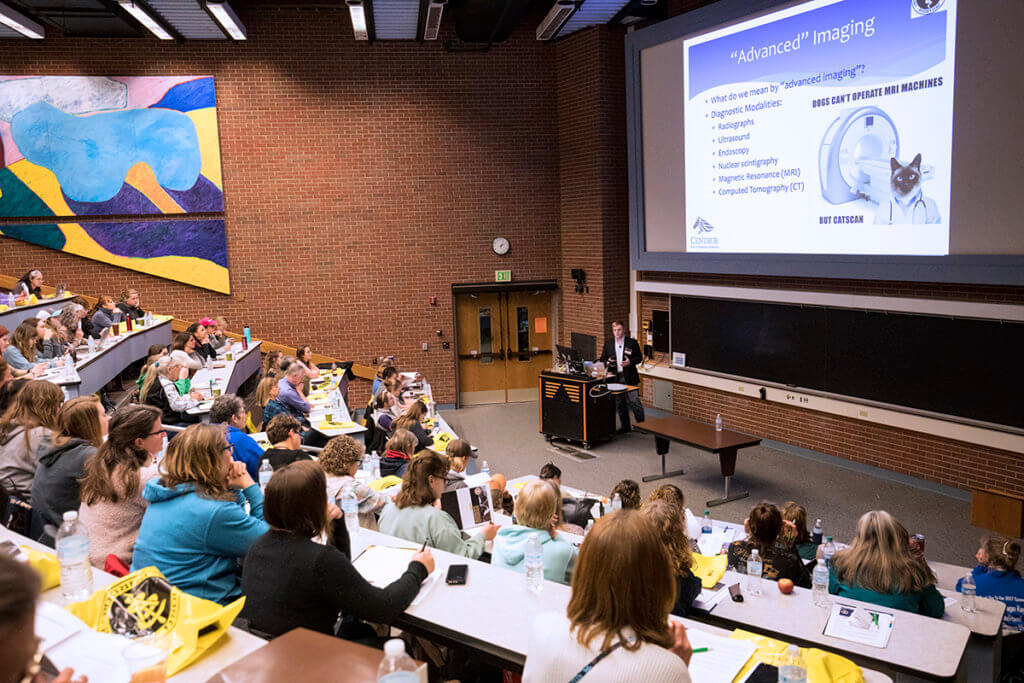 Dr. Davern presents a lecture at the 2019 Horseman's Forum