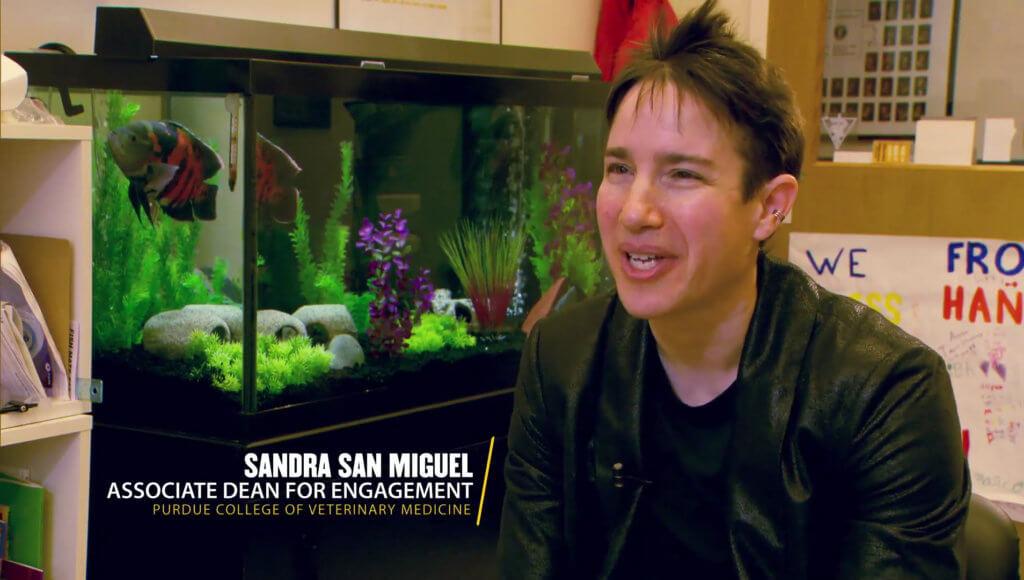 Sandy San Miguel interviewed in Footprints video