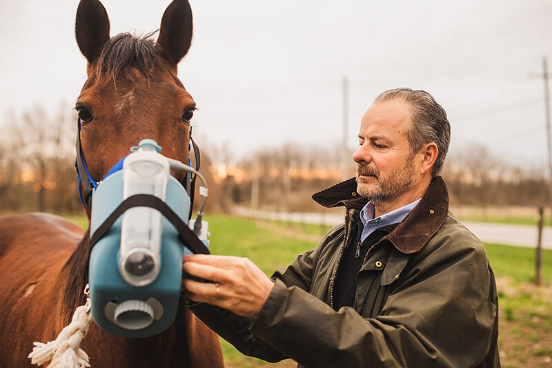 Dr. Couetil attaches an equine nebulizer to a horse