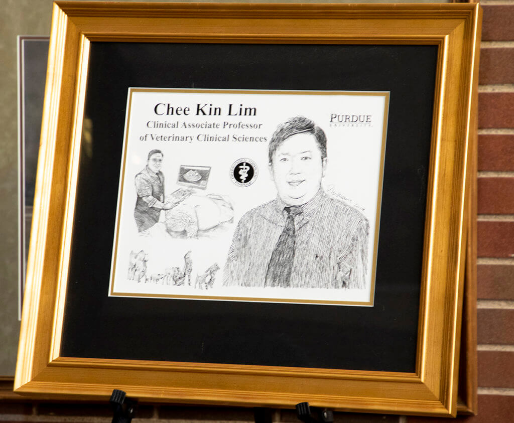 Dr. Lim's hand-drawn illustration by David Williams is pictured in its frame