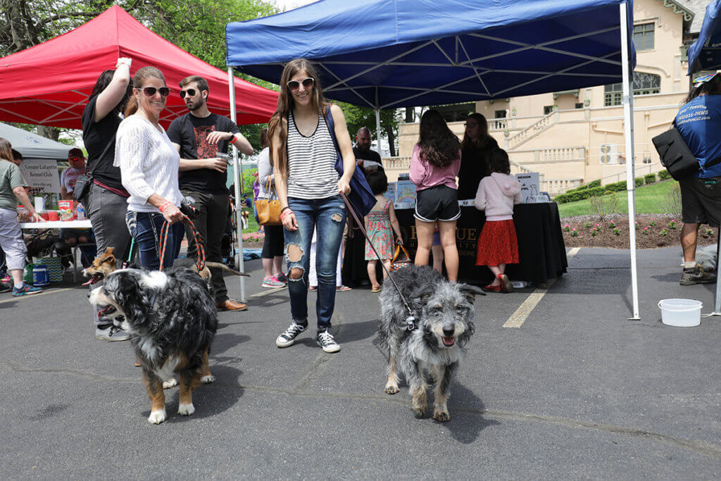 Event attendees stand with their dogs in front of sponsor tents