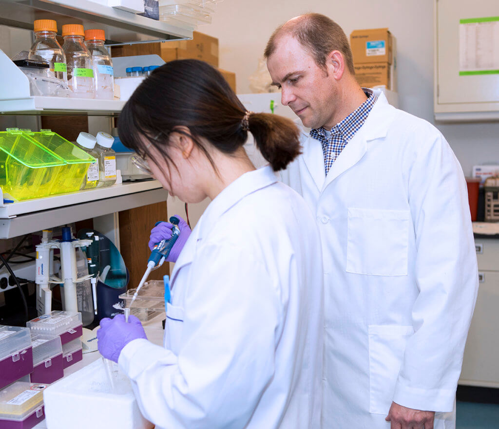 Dr. Main oversees the work being conducted by a graduate student in his lab