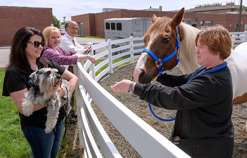 Dean Reed and Lee Ann Happ lean against the corral as Janet holds Henry up to greet a horse led by a technician
