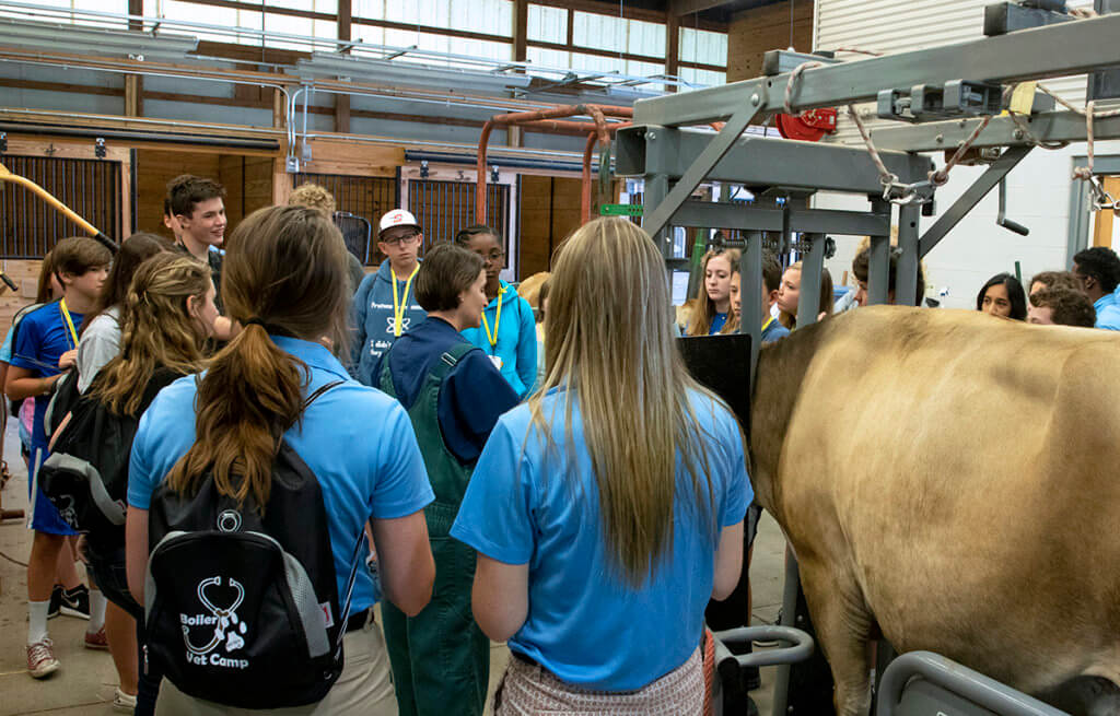 Campers circle around Dr. Kellie McGrady as she demonstrates how to give a cow medicine