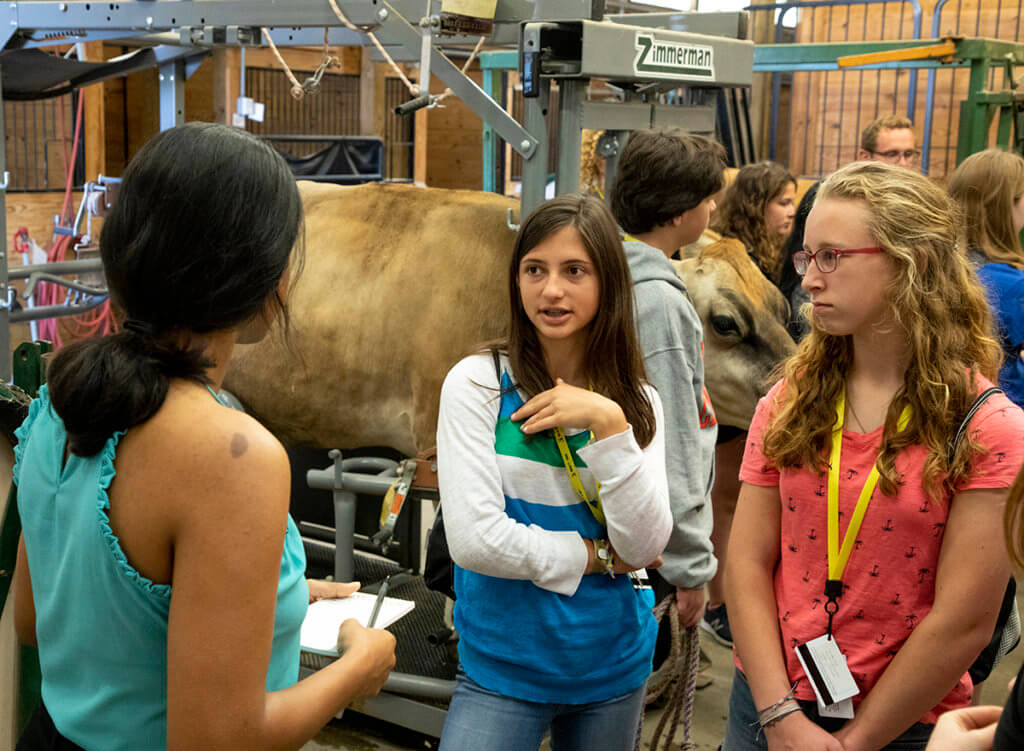 Maya interviews two campers while other participants take part in a cow demonstration