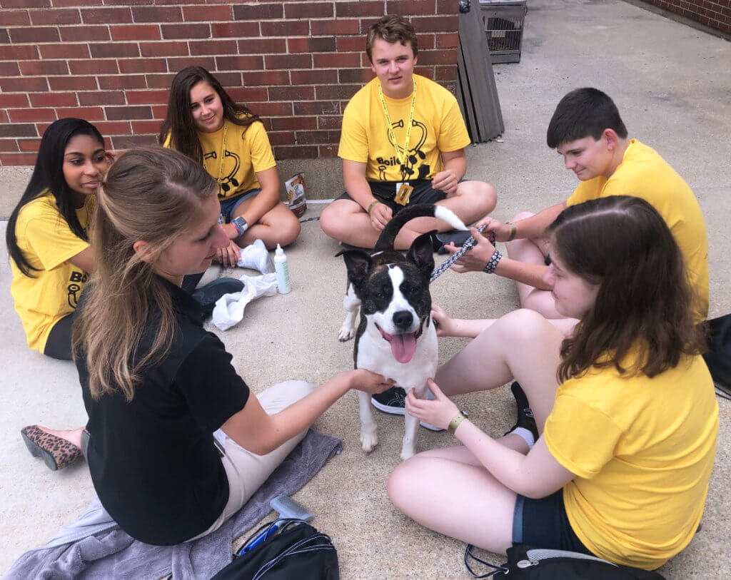 A happy black and white dog stands in the middle of a circle of a campers