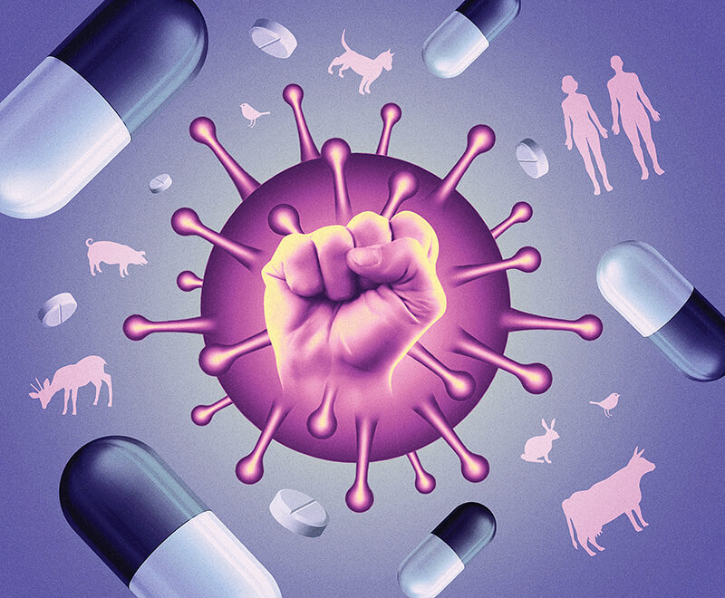 With antimicrobial resistance on the rise, many infections that were once easily treated are becoming fatal. (Illustration/Stuart Briars)