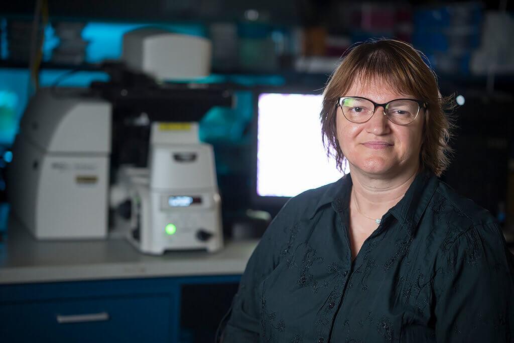 Sophie A. Lelièvre, DVM, PhD, LLM (Public Health) Professor of Cancer Pharmacology