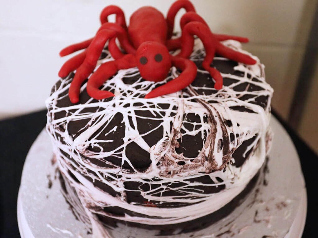 A chocolate layered cake is decorated with an edible spider web with a red spider sitting on top