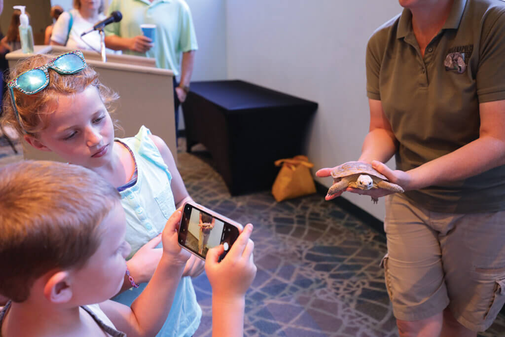 A boy takes a picture on a phone of a small turtle being held by a zoo employee as a young girl watches the phone screen
