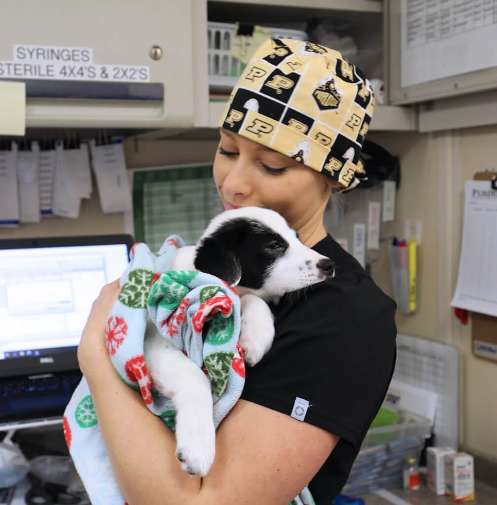 Mackenzie holds a black and white puppy wrapped in a blanket against her chest in the mobile surgery unit