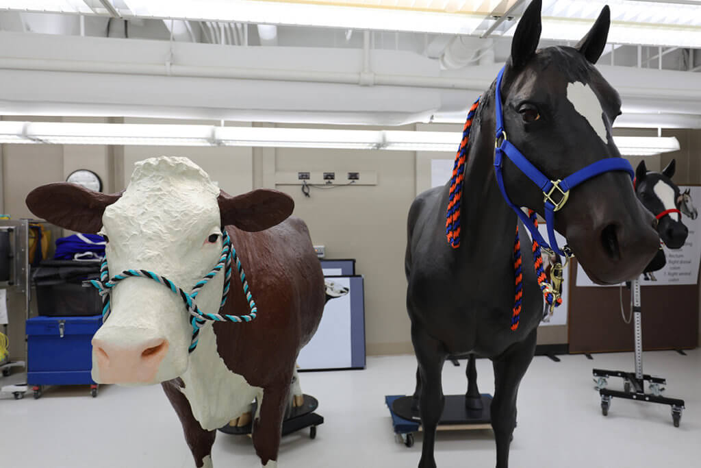 The cow and horse models face the camera standing side by side