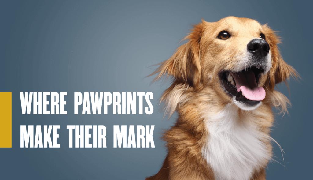 Print Makers Leave Their Mark Purdue University College Of Veterinary Medicine