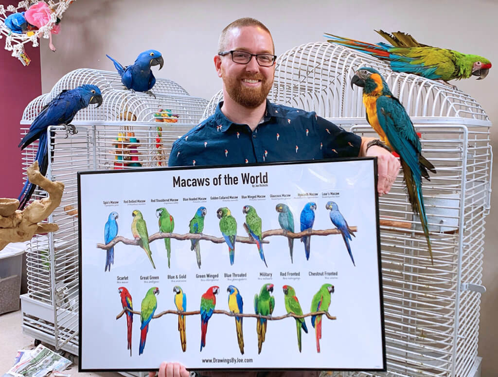 Joe holds a framed print of different macaws perched on branches surrounded by three different macaw birds