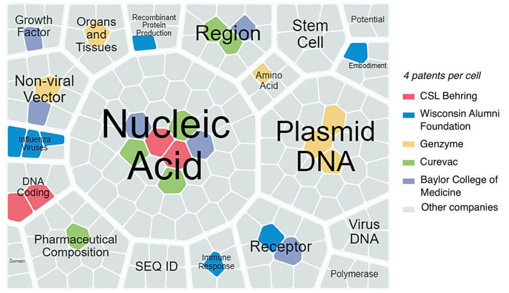 diagram of cells