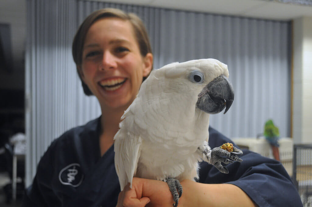 Lydia pictured smiling holding a white cockatoo