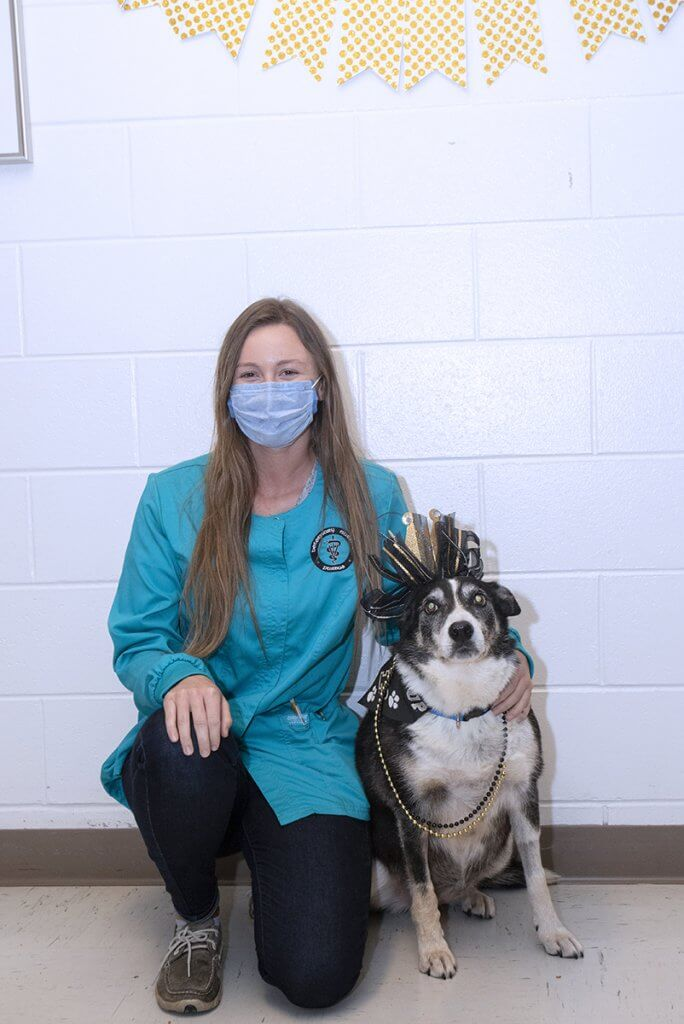 Justine kneels by Sheeba in the hospital who is dressed up with a black and gold bow crown, bandana, and beaded necklaces