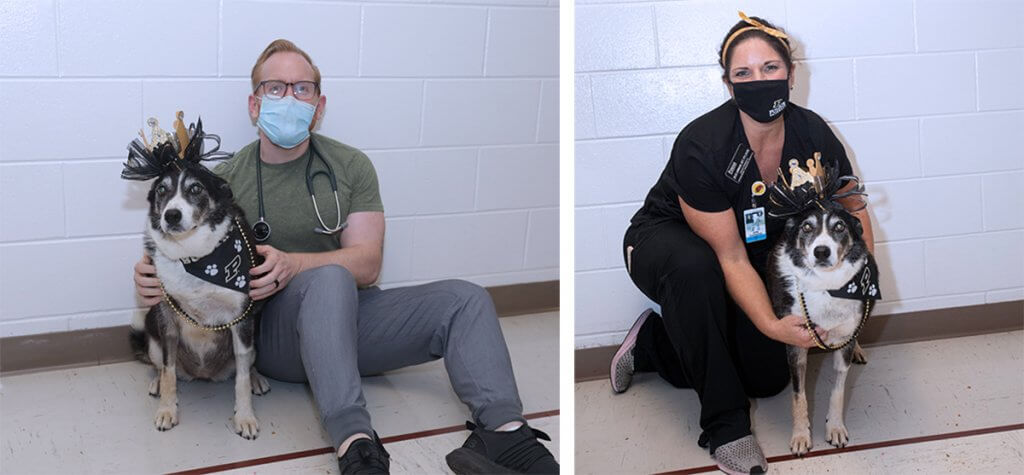 Sheeba is pictured separately with Dr. Woolcock and Julie seated in the hospital's hallway