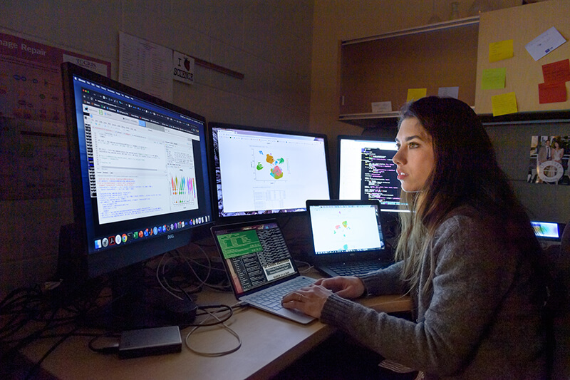 Dr. Lanman works on multiple computer screens in her office