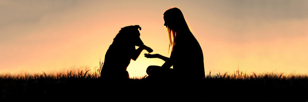 A silhouette of a dog putting its paw on a woman's outstretched hand as they sit in the grass against a sunrise sky
