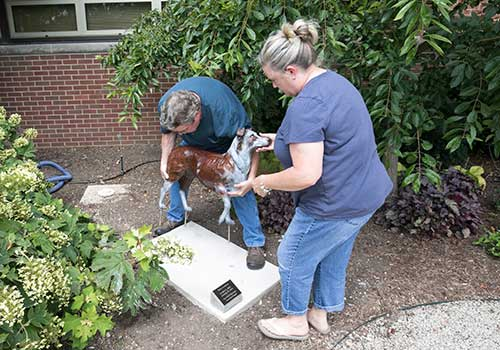 Sculptor Rita Hadley works with her husband Rick on the installation of a sculpture memorializing an Australian Shepherd named Dixie in Purdue Veterinary Medicine's Dolores McCall Pet Tribute Garden. The garden was established as a gift from the College's DVM Class of 1972.