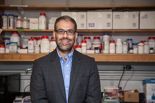 Dr. Mohamed Seleem