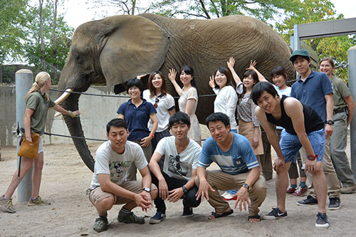 Touching an elephant at the Indianapolis Zoo was among the highlights described by the Kitasato veterinary students as they shared about their experiences during their time in Indiana. For some, this was their first visit to the U.S.