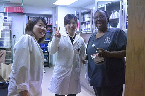 Kitasato veterinary students (left-right) Hiromi Miyauchi and Nanako Hayashi pause for a photo-op with Dr. Paula Johnson, PVM clinical assistant professor of small animal emergency and critical care.