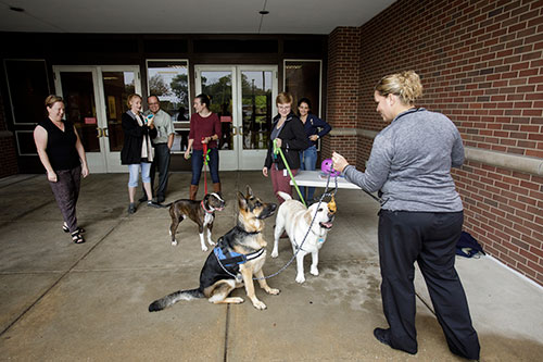 Julie Lewellen (right), secretary to the head of the Department of Comparative Pathobiology, calls to attention her German shepherd, Athena, and two other canine participants in the Puppy Cuddles United Way fundraising event, King (left), a pit mixed-breed dog owned by Caitlin Smith of the DVM Class of 2019, and Hudson, a Labrador and former teaching dog owned by Jesse Whitfield, also of the DVM Class of 2019.
