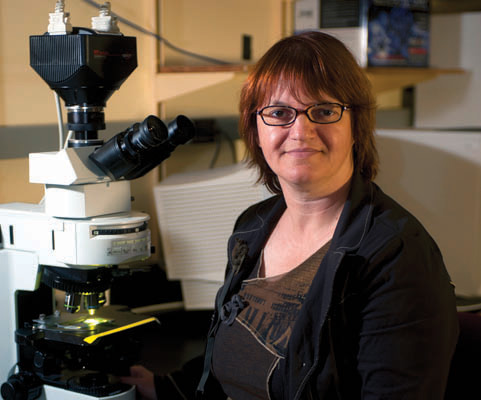 Dr. Sophie Lelièvre, professor of cancer pharmacology in the Purdue University College of Veterinary Medicine.