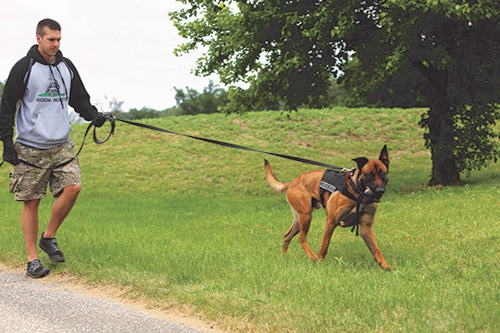 Lafayette Police Department K9 Rocky with his partner, Officer Austin Schutter, after a Tippecanoe County Metro K9 Unit training session in which he practiced finding illegal drugs in an open area.