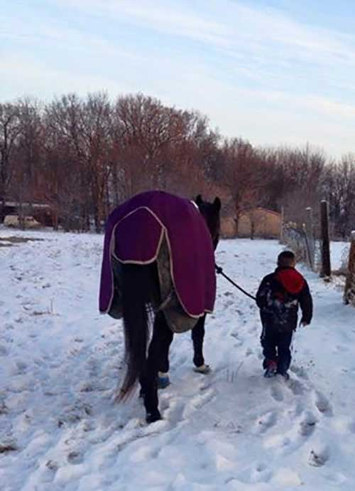 A young rider leads a horse out for exercise in the snow. Blanketing helps horses maintain their body temperature in the cold. Blankets also decrease hair coat production, and keep the majority of the coat mud-free.