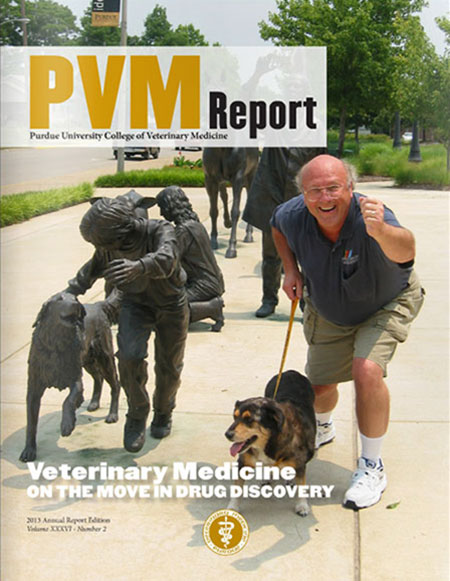 Annual 2013 PVM Report
