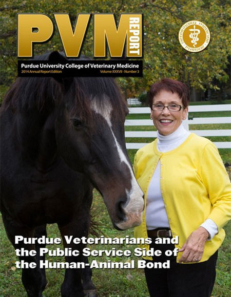 Annual 2014 PVM Report