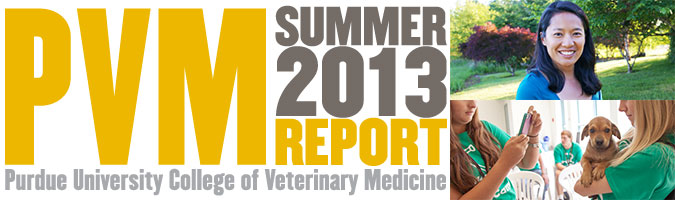 Summer 2013 PVM Report
